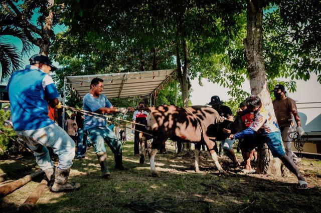 Simak Aturan Ibadah Iduladha dan Kurban Saat PPKM Darurat di Tanjungpinang