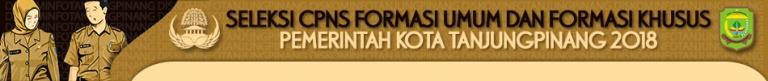 Pengumuman Tentang Seleksi Calon Pegawai Negeri Sipil Formasi Umum dan Formasi Khusus Kota Tanjungpinang Provinsi Kepulauan Riau Tahun 2018